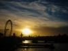 London Eye im Sonnenuntergang